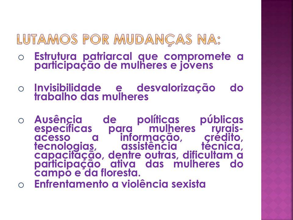 o Estrutura patriarcal que compromete a participação de mulheres e jovens o Invisibilidade e desvalorização do trabalho das mulheres o Ausência de pol