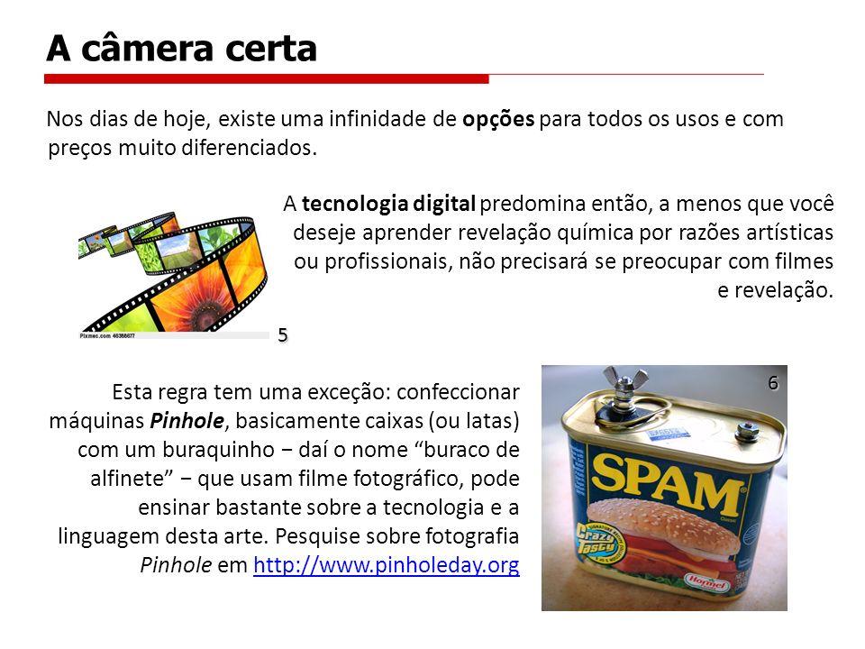 TIPOEXEMPLOS VANTAGENSDESVANTAGENS Câmeras digitais de baixo custo Webcams e Dispositivos fotogr á ficos inclu í dos em fones celulares.