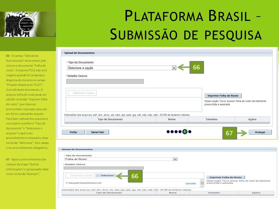 P LATAFORMA B RASIL – S UBMISSÃO DE PESQUISA 66 - O campo