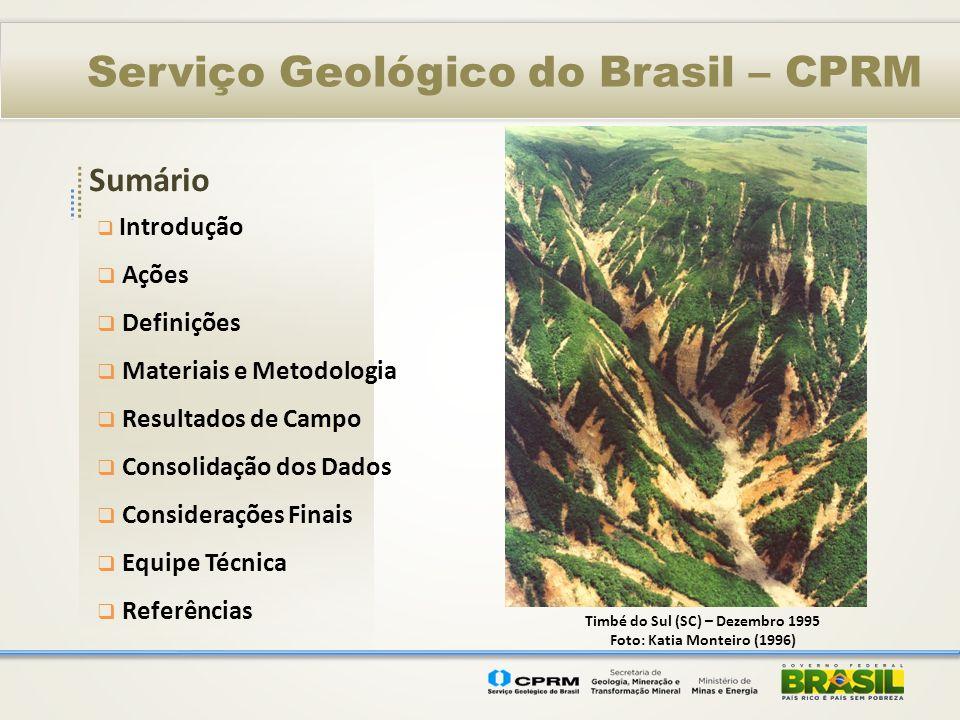 Sumário Serviço Geológico do Brasil – CPRM Introdução Ações Definições Materiais e Metodologia Resultados de Campo Consolidação dos Dados Consideraçõe