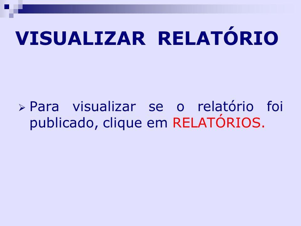 VISUALIZAR RELATÓRIO Para visualizar se o relatório foi publicado, clique em RELATÓRIOS.