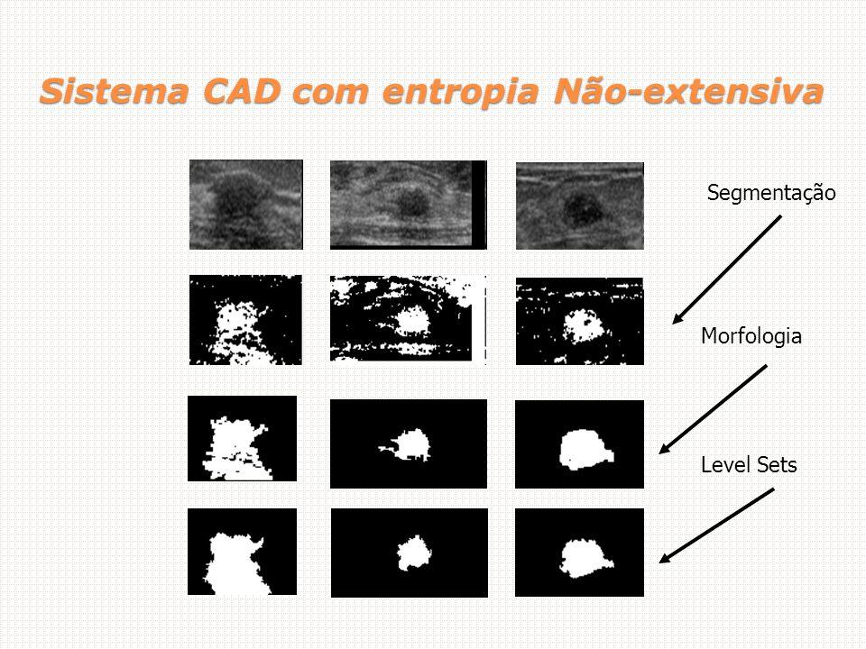 Sistema CAD com entropia Não-extensiva Level Sets Morfologia Segmentação