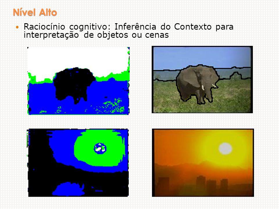 Nível Alto Raciocínio cognitivo: Inferência do Contexto para interpretação de objetos ou cenas