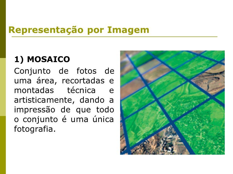 1) MOSAICO Conjunto de fotos de uma área, recortadas e montadas técnica e artisticamente, dando a impressão de que todo o conjunto é uma única fotogra