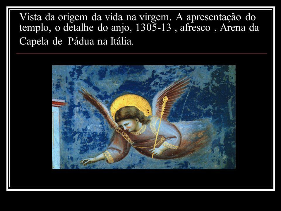 Vista da origem da vida na virgem. A apresentação do templo, o detalhe do anjo, 1305-13, afresco, Arena da Capela de Pádua na Itália.