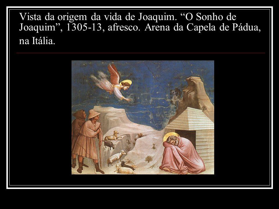 Vista da origem da vida de Joaquim. O Sonho de Joaquim, 1305-13, afresco. Arena da Capela de Pádua, na Itália.