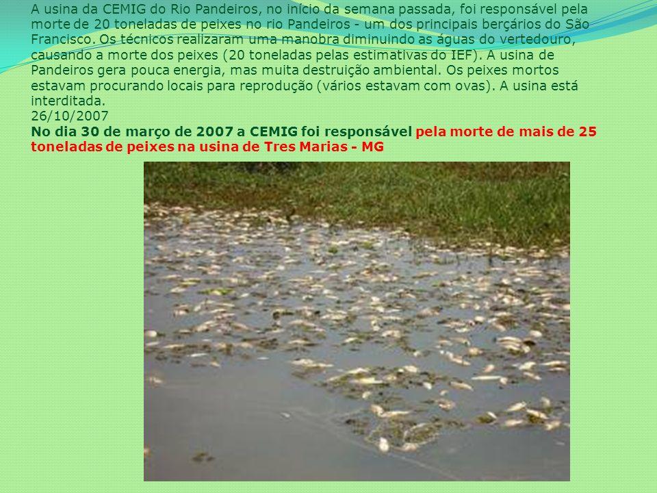 A usina da CEMIG do Rio Pandeiros, no início da semana passada, foi responsável pela morte de 20 toneladas de peixes no rio Pandeiros - um dos principais berçários do São Francisco.