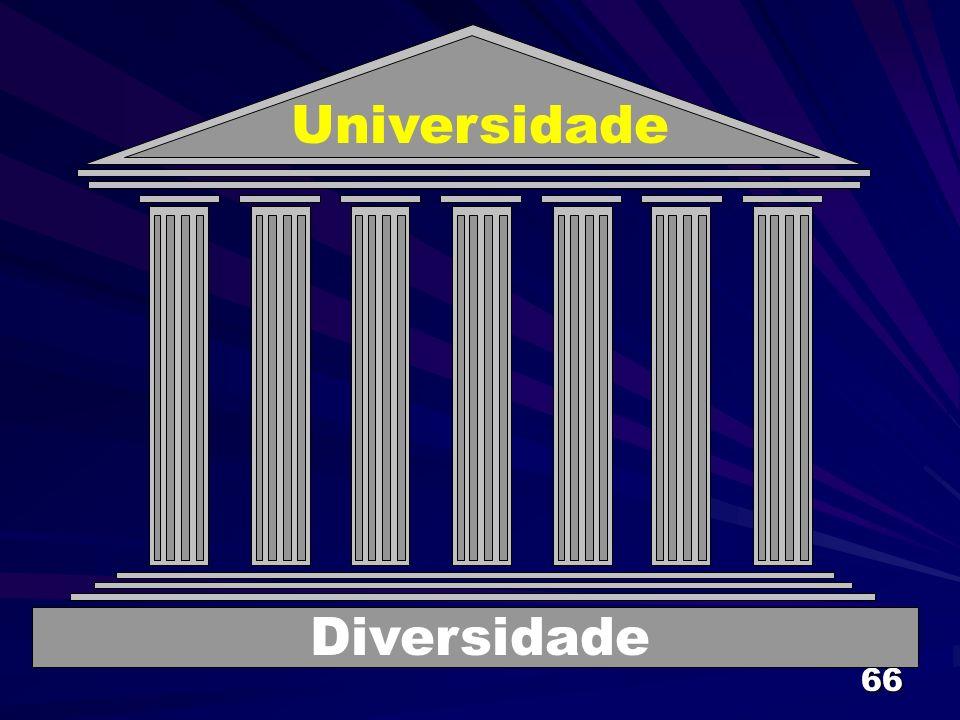 66 Universidade Diversidade
