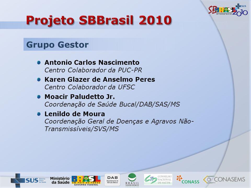Disponível entre os dias 10 e 29 de junho de 2009 no sítio www.tiny.cc/consulta_sb2010 Análise das contribuições, pelo Grupo Gestor, das contribuições do país inteiro, nos dias 30 de junho e 1º de julho.