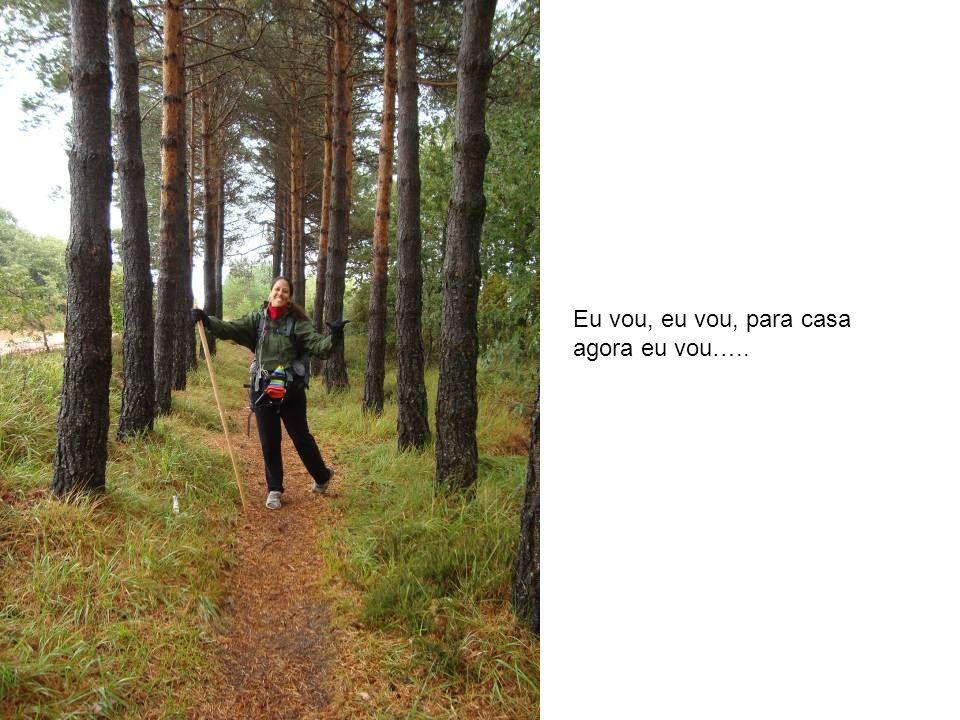 Eu vou, eu vou, para casa agora eu vou…..