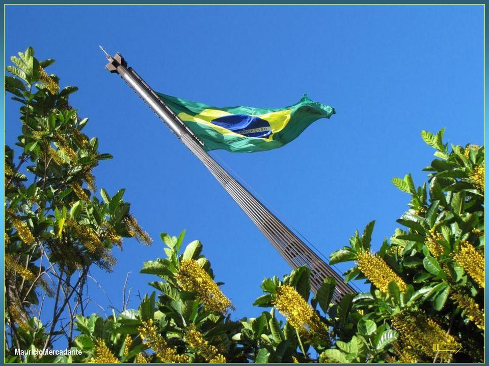 Um exemplar especial da bandeira, com 280 metros quadrados de área, está permanentemente a cem metros de altura, no alto do mastro plantado na Praça d