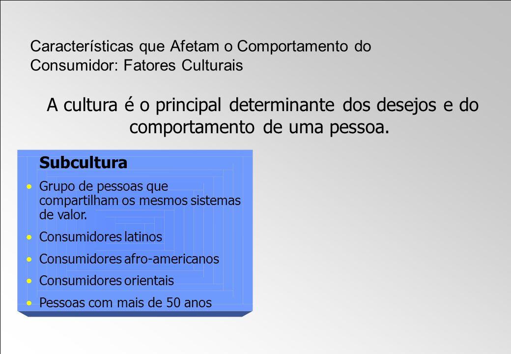 Subcultura Grupo de pessoas que compartilham os mesmos sistemas de valor. Consumidores latinos Consumidores afro-americanos Consumidores orientais Pes