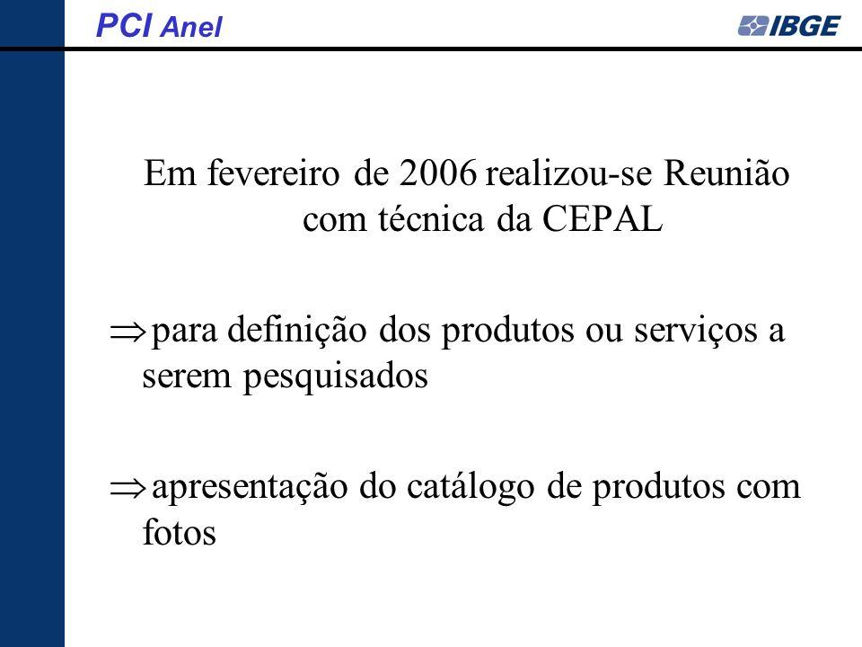 Em fevereiro de 2006 realizou-se Reunião com técnica da CEPAL para definição dos produtos ou serviços a serem pesquisados apresentação do catálogo de