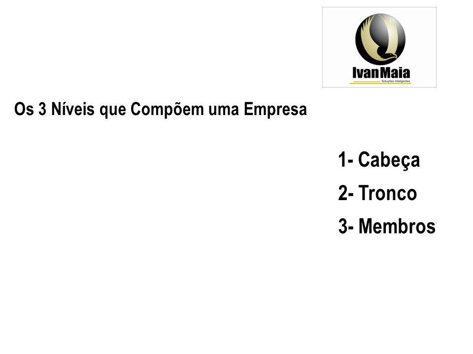 Os 3 Níveis que Compõem uma Empresa 1- Cabeça 2- Tronco 3- Membros