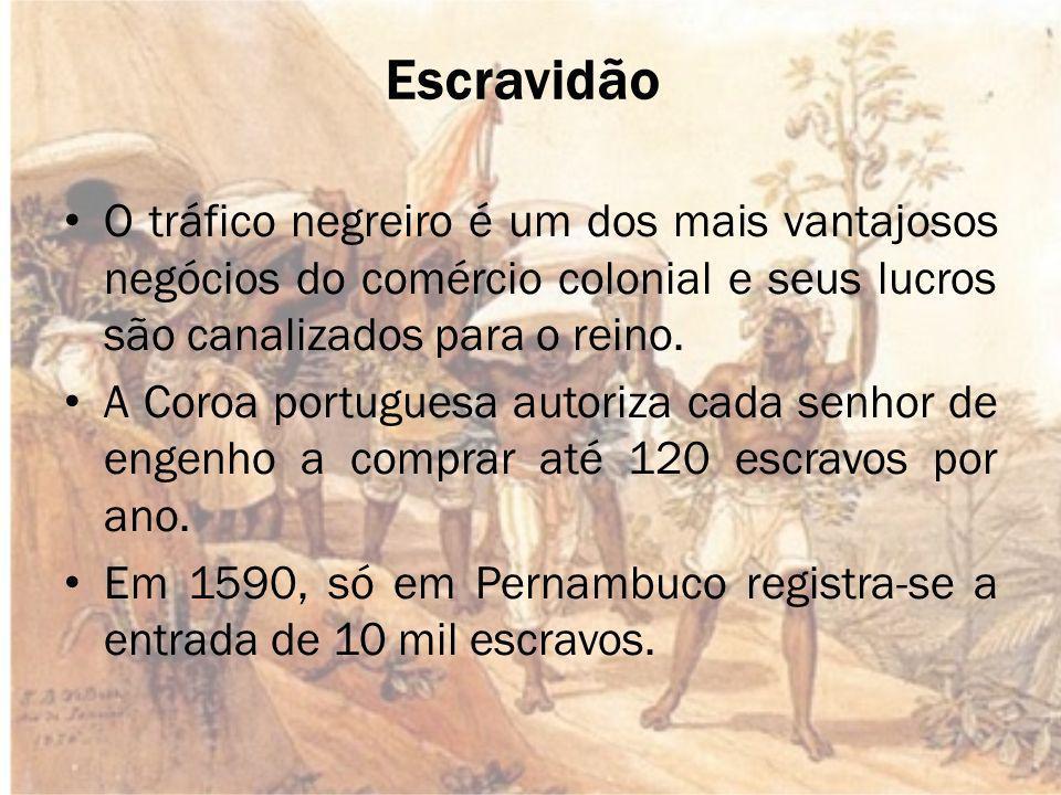 Cana-de-açúcar O cultivo da cana-de-açúcar é introduzido no Brasil por Martim Afonso de Souza, na capitania de São Vicente.