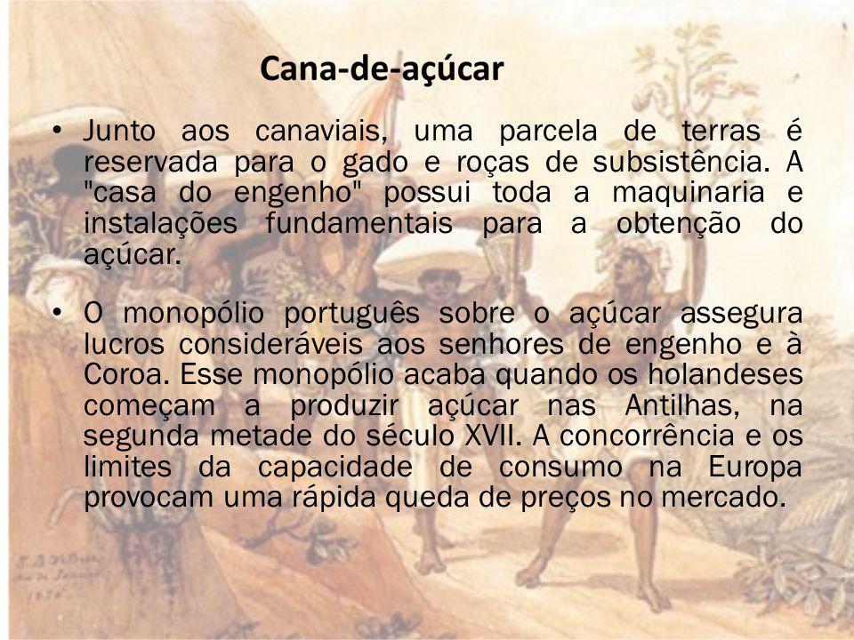 5) O senhor do engenho que se tornou a pessoa mais rica do Brasil.