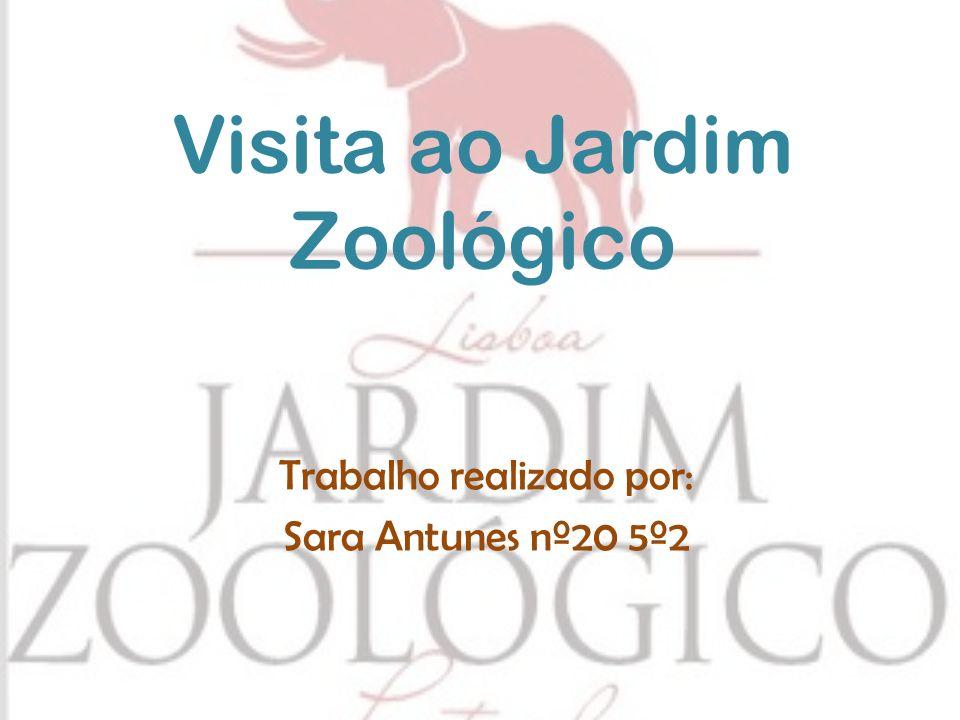 Visita ao Jardim Zoológico Trabalho realizado por: Sara Antunes nº20 5º2