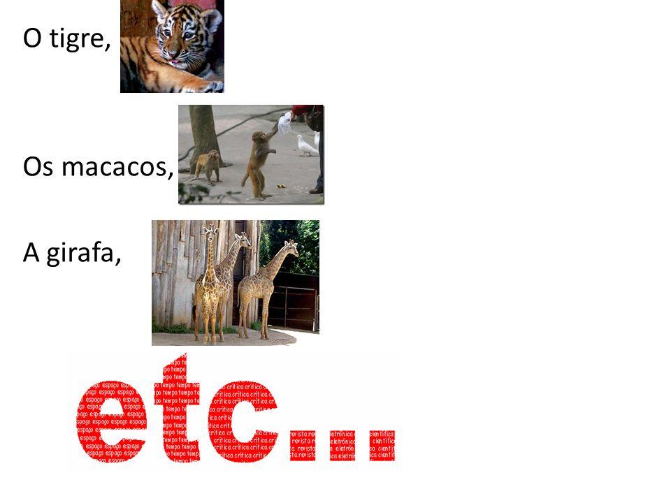 O tigre, Os macacos, A girafa,