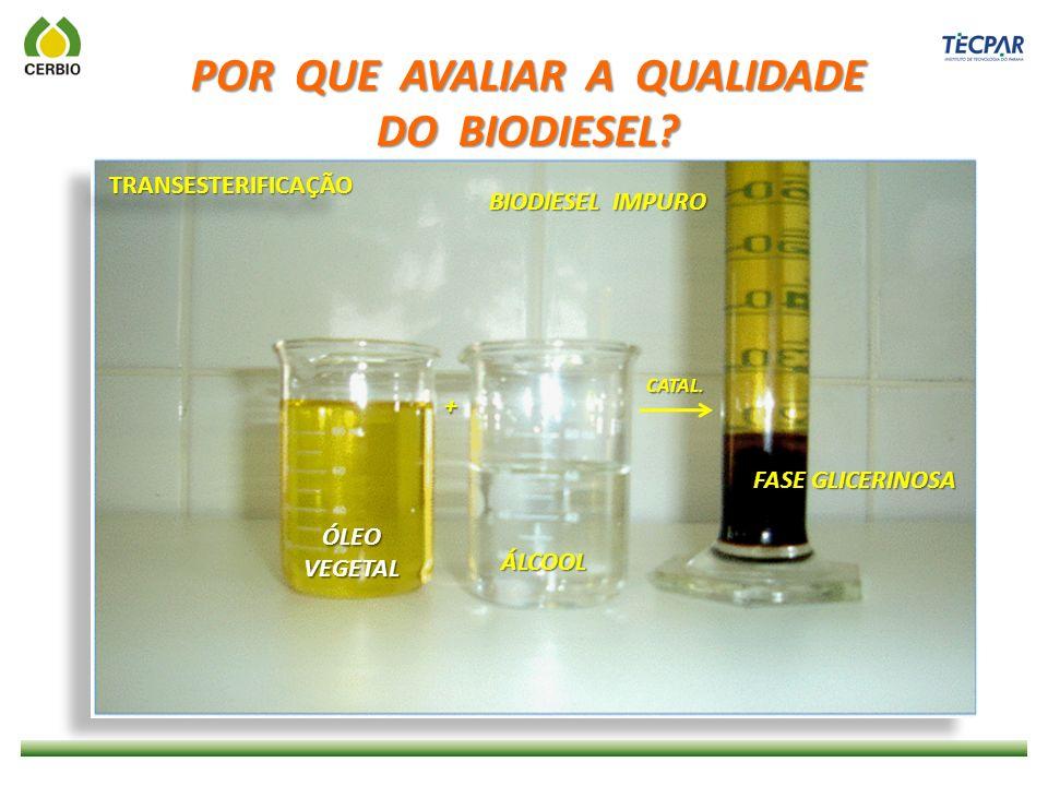 PROJETO LINHA VERDE - CURITIBA LIGEIRÃO - CURITIBA USO DO B100
