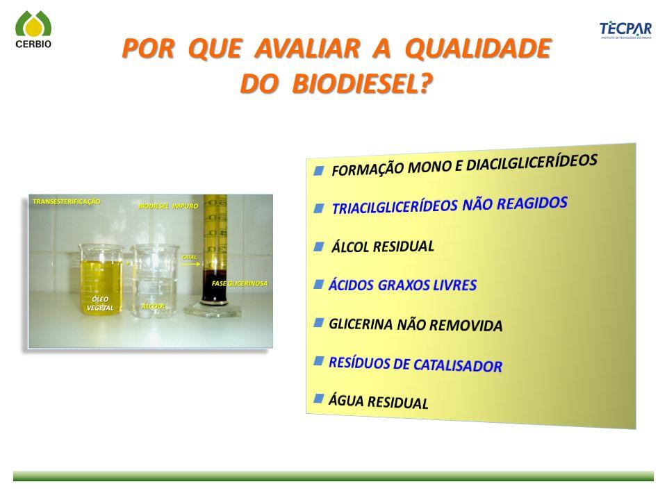 PISTÃO BLOCO USO DO B100