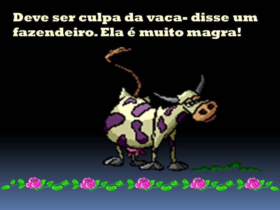 Veio a primeira vaca,o touro deu uma cheirada e nada!!!