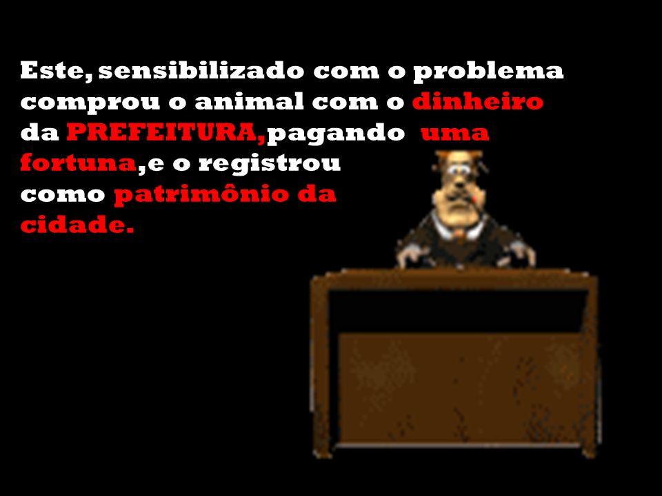 Este, sensibilizado com o problema comprou o animal com o dinheiro da PREFEITURA,pagando uma fortuna,e o registrou como patrimônio da cidade.