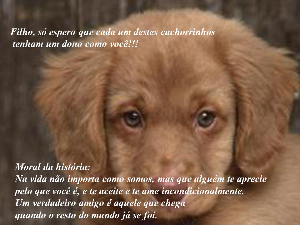 Filho, só espero que cada um destes cachorrinhos tenham um dono como você!!! Moral da história: Na vida não importa como somos, mas que alguém te apre