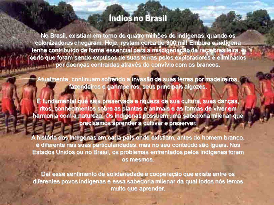 Índios no Brasil No Brasil, existiam em torno de quatro milhões de indígenas, quando os colonizadores chegaram.