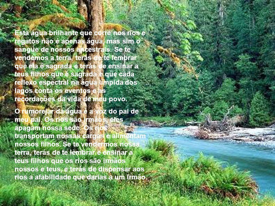 Esta água brilhante que corre nos rios e regatos não é apenas água, mas sim o sangue de nossos ancestrais.