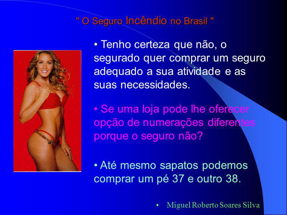 Miguel Roberto Soares Silva O mercado segurador procurando sobreviver com os prêmios baixos e a concorrência acirrada, engessou os seus produtos. Você