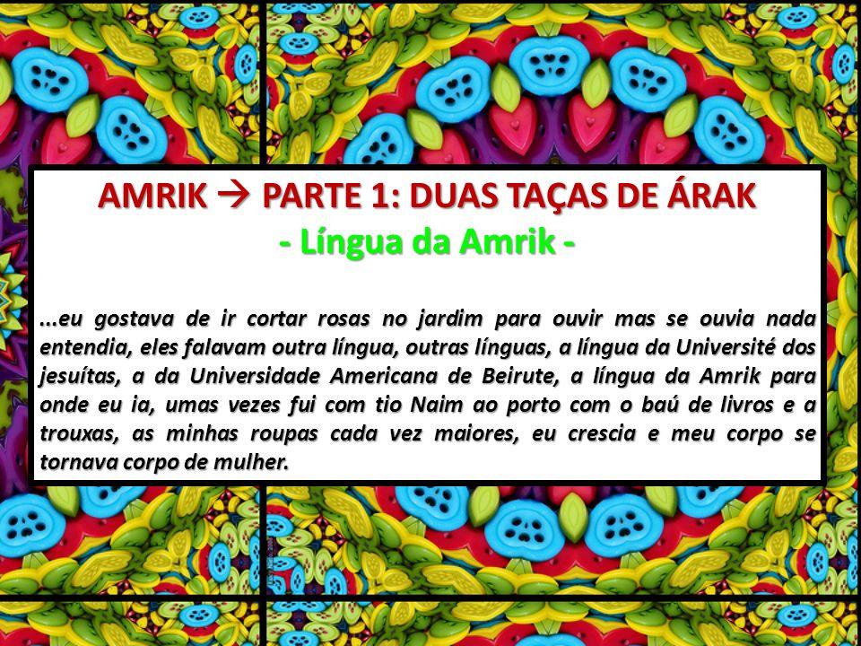 AMRIK PARTE 1: DUAS TAÇAS DE ÁRAK - Língua da Amrik -...eu gostava de ir cortar rosas no jardim para ouvir mas se ouvia nada entendia, eles falavam ou