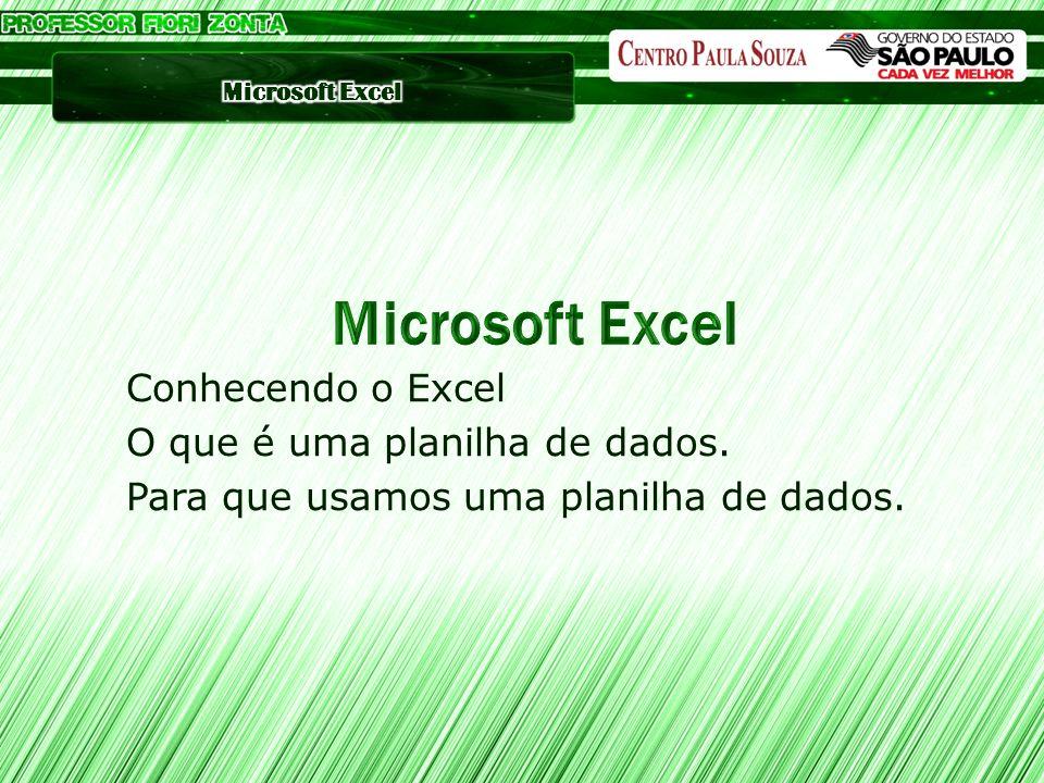 Conhecendo o Excel O que é uma planilha de dados. Para que usamos uma planilha de dados.