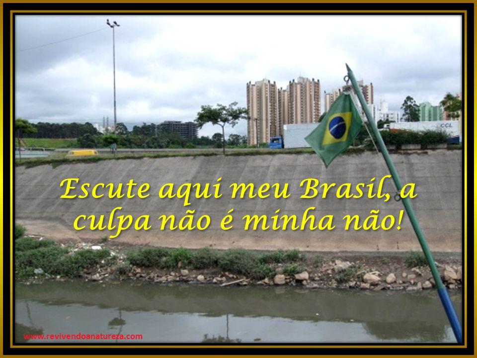 Escute aqui meu Brasil, a culpa não é minha não.Escute aqui meu Brasil, a culpa não é minha não.