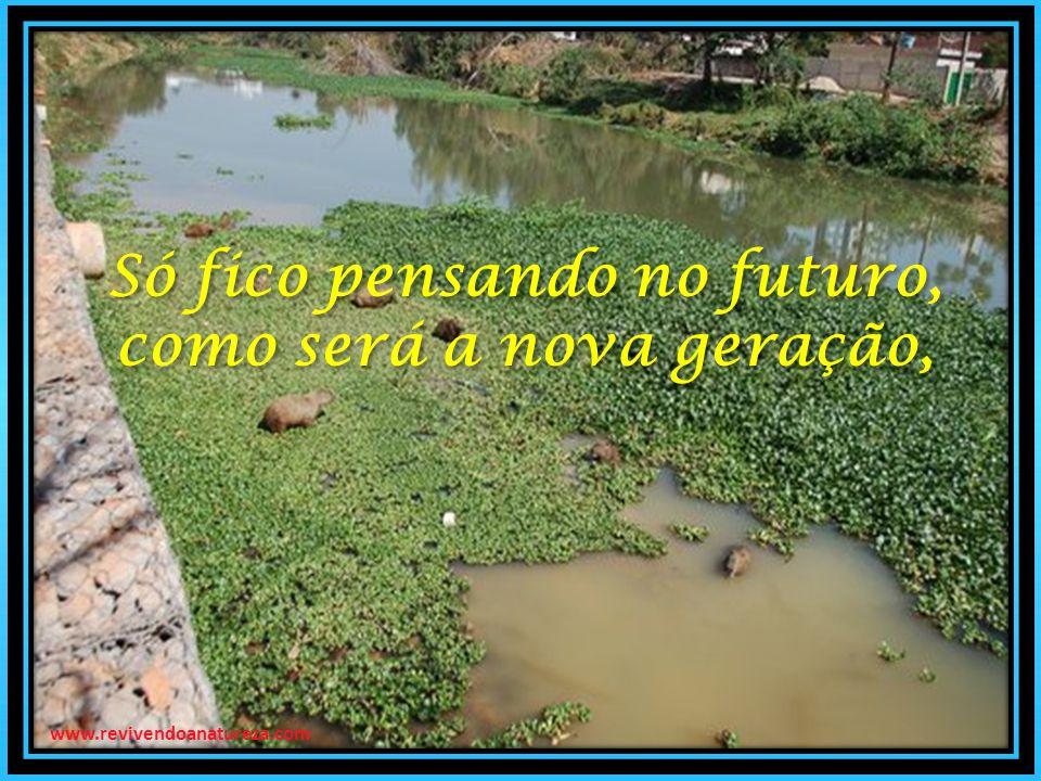 Só fico pensando no futuro, como será a nova geração, Só fico pensando no futuro, como será a nova geração, www.revivendoanatureza.com