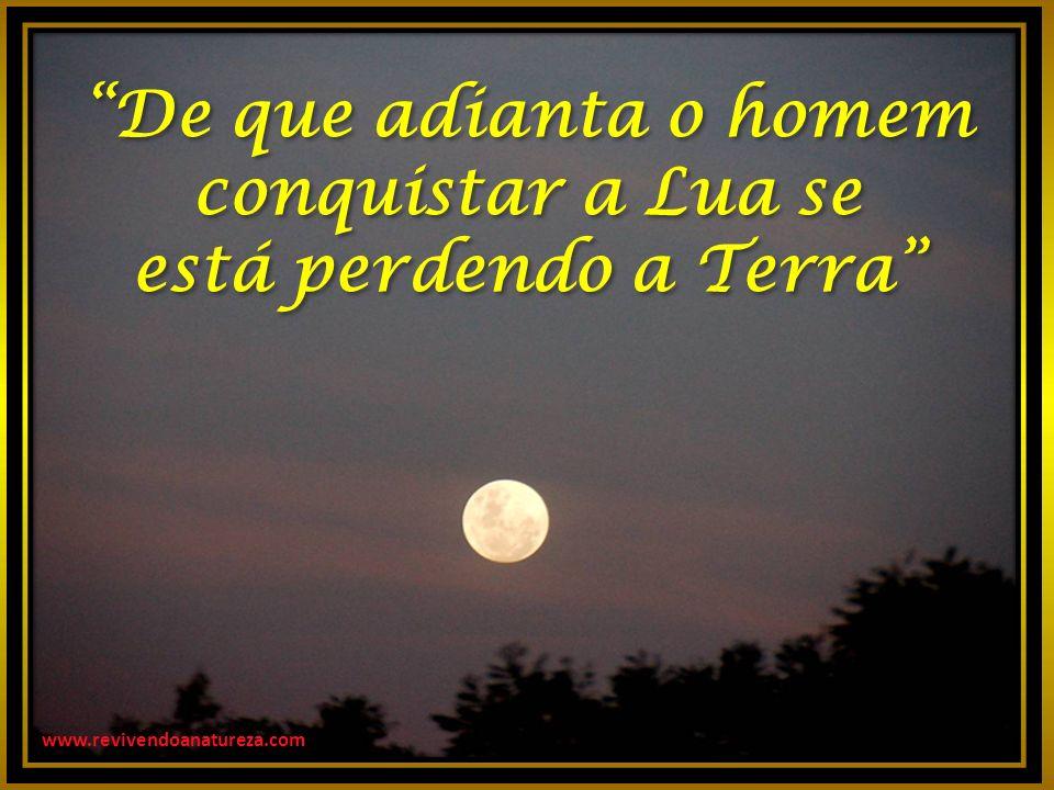 www.revivendoanatureza.com De que adianta o homem conquistar a Lua se está perdendo a Terra De que adianta o homem conquistar a Lua se está perdendo a Terra