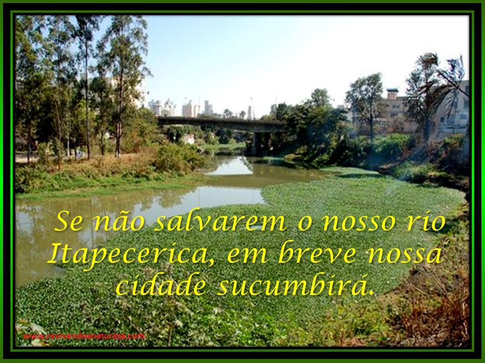 Se não salvarem o nosso rio Itapecerica, em breve nossa cidade sucumbirá.