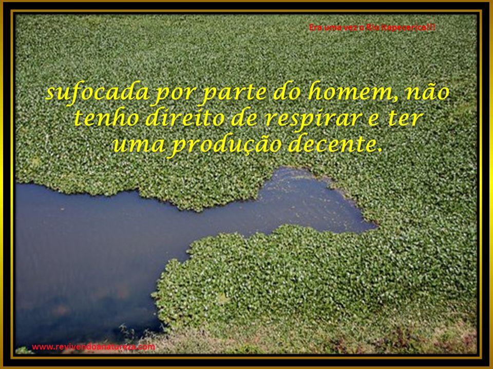 Era uma vez o Rio Itapecerica!!.