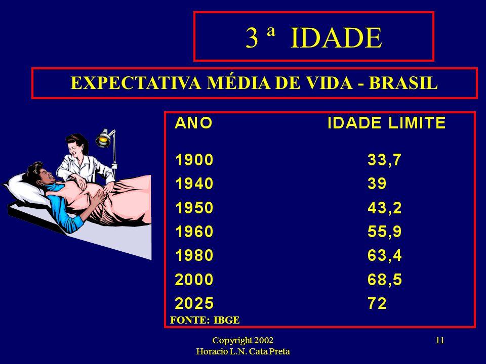 Copyright 2002 Horacio L.N. Cata Preta 10 CUSTO DA ASSISTÊNCIA MÉDICA AO LONGO DA VIDA 0 – 60 anos ATÉ 60 ANOS: 100 UNIDADES MONETÁRIAS (R$ 60 MIL a p