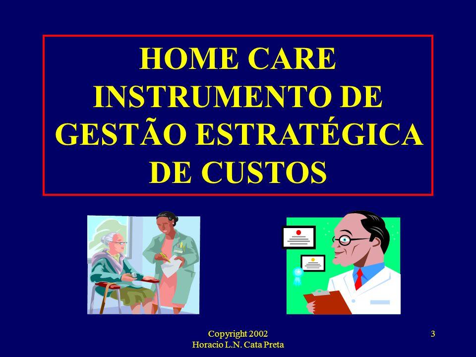 Copyright 2002 Horacio L.N. Cata Preta 2 Horacio Luiz Navarro Cata Preta Graduado em Ciências Contábeis pela Faculdade Moraes Junior (RJ); Pós-Graduad