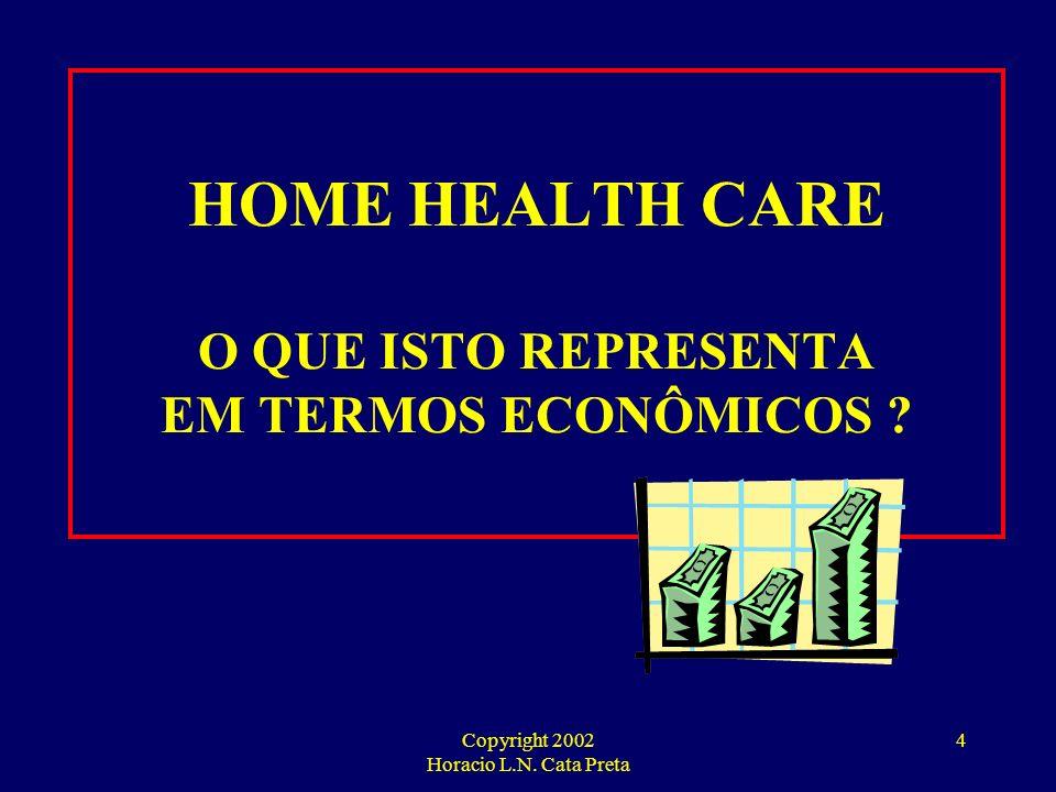 Copyright 2002 Horacio L.N. Cata Preta 3 HOME CARE INSTRUMENTO DE GESTÃO ESTRATÉGICA DE CUSTOS
