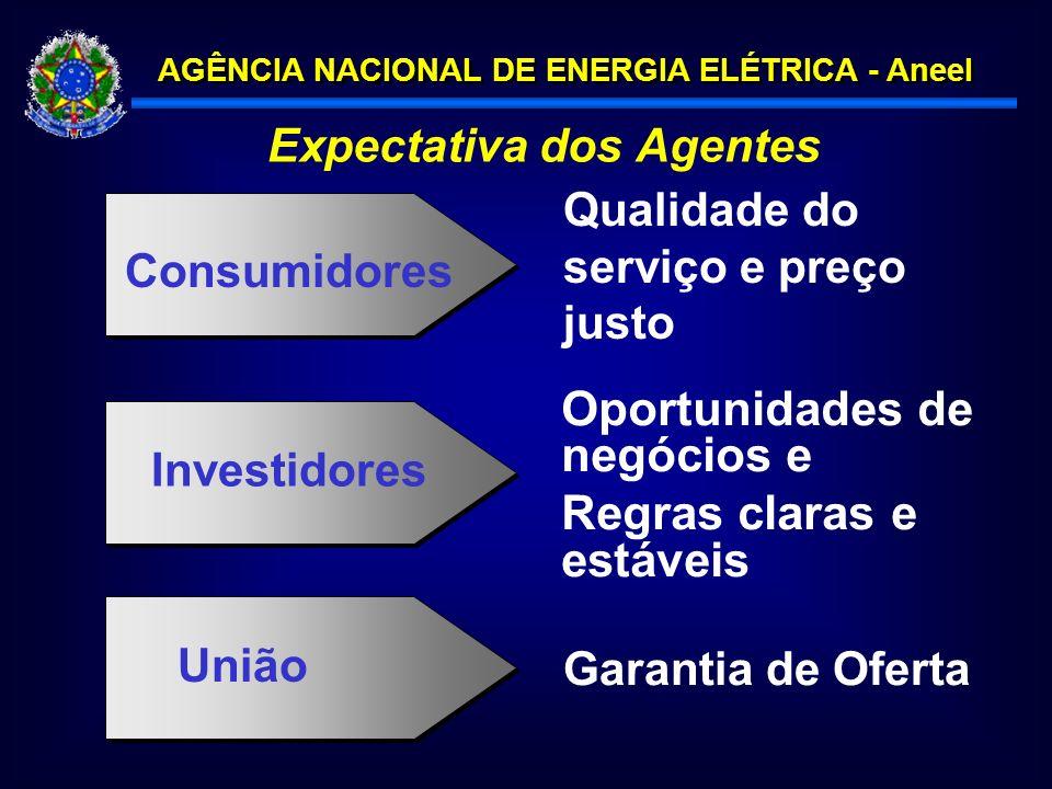 AGÊNCIA NACIONAL DE ENERGIA ELÉTRICA - Aneel Expectativa dos Agentes Oportunidades de negócios e Regras claras e estáveis Investidores Garantia de Oferta União Qualidade do serviço e preço justo Consumidores