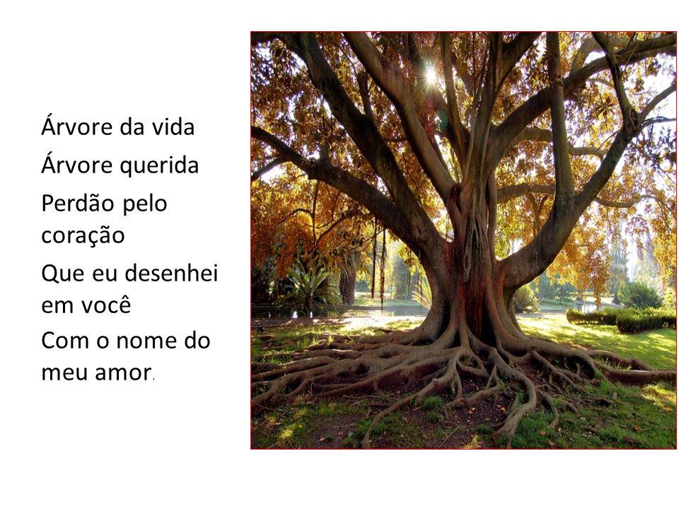 Árvore da vida Árvore querida Perdão pelo coração Que eu desenhei em você Com o nome do meu amor.