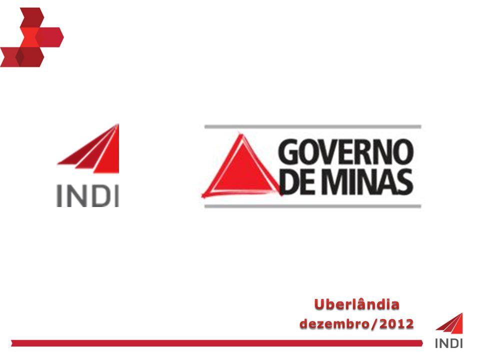 Agência de Promoção de Investimentos de Minas Gerais!