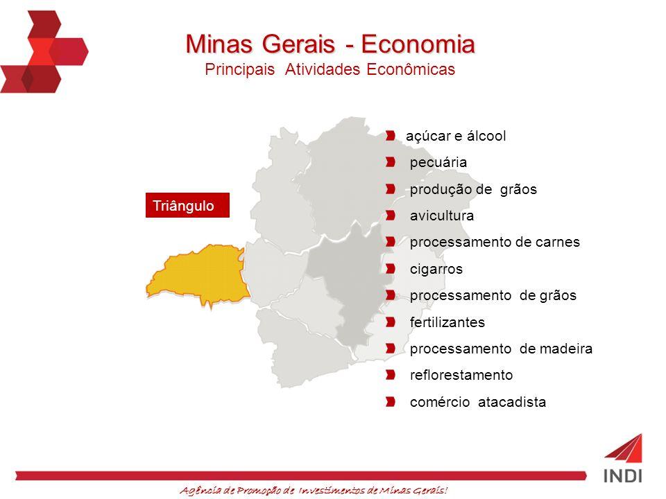 Agência de Promoção de Investimentos de Minas Gerais! açúcar e álcool pecuária produção de grãos avicultura processamento de carnes cigarros processam