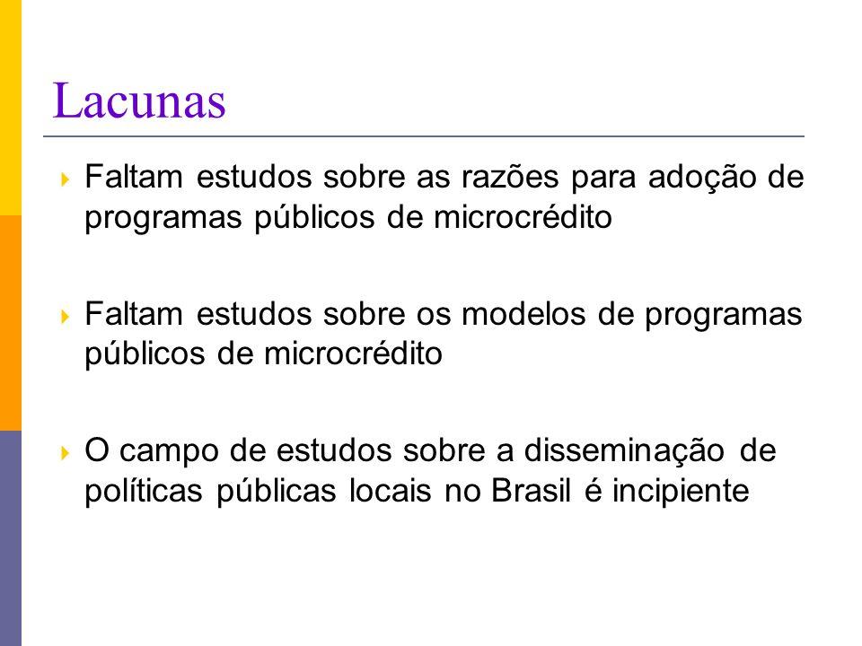 Lacunas Faltam estudos sobre as razões para adoção de programas públicos de microcrédito Faltam estudos sobre os modelos de programas públicos de micr
