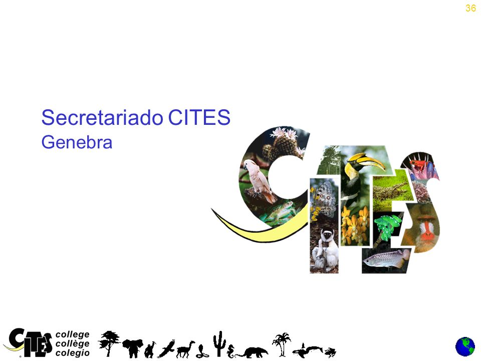 36 Secretariado CITES Genebra