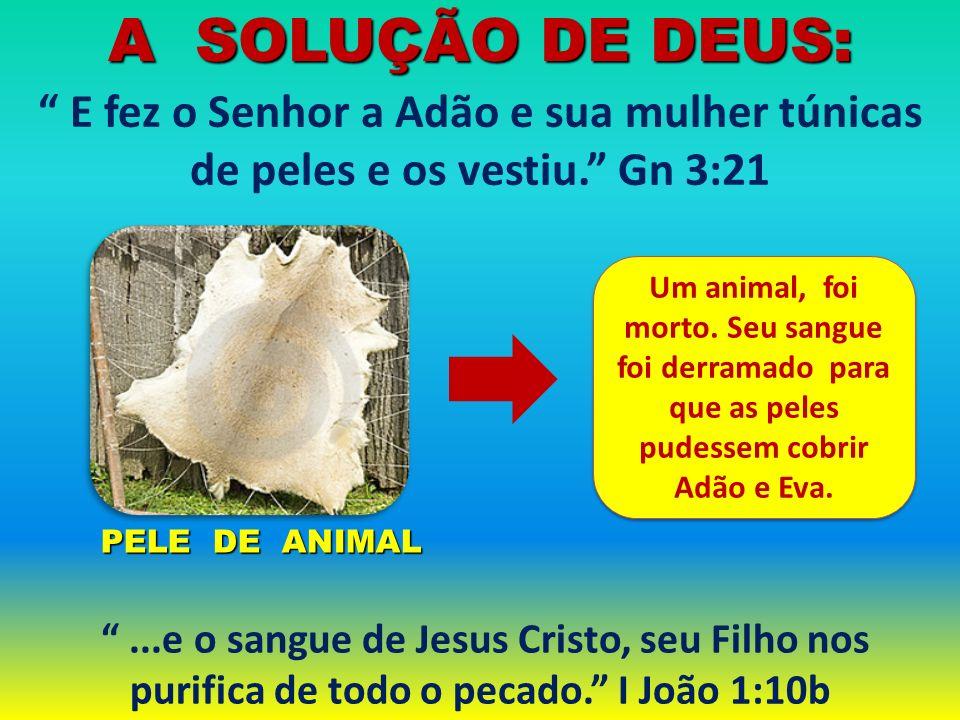 PELE DE ANIMAL PELE DE ANIMAL E fez o Senhor a Adão e sua mulher túnicas de peles e os vestiu. Gn 3:21 A SOLUÇÃO DE DEUS:...e o sangue de Jesus Cristo