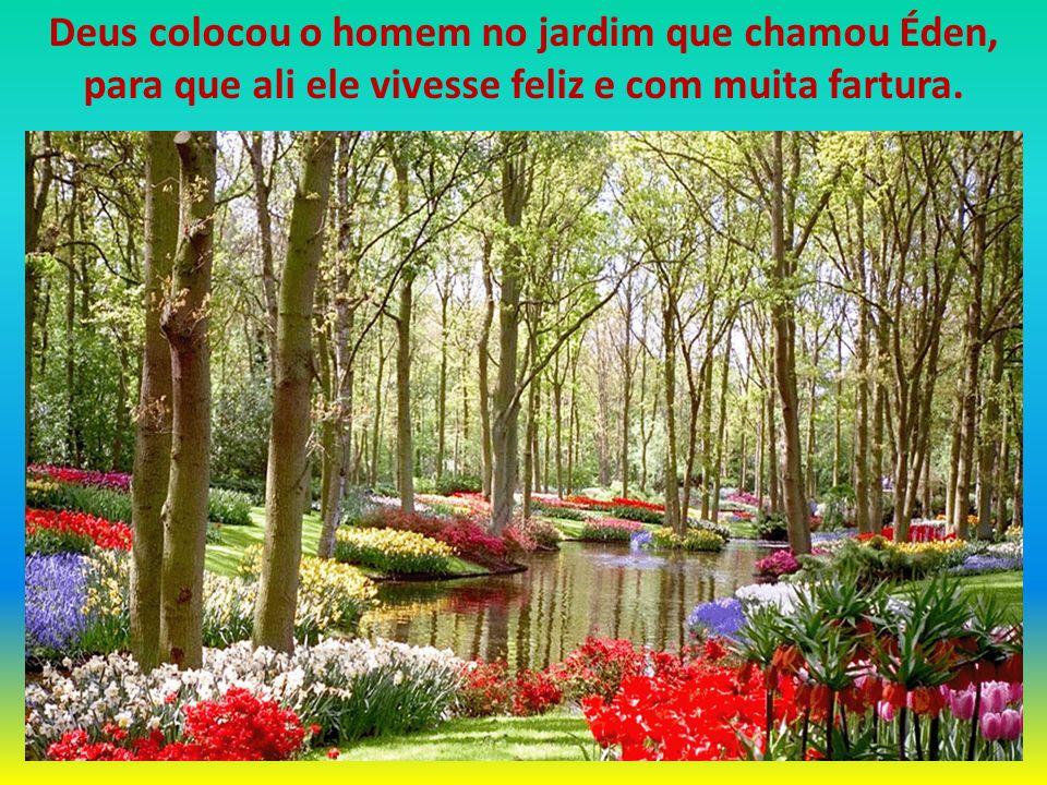 DEUS COLOCOU ALI DUAS ÁRVORES E DEU UMA ORDEM: Árvore da Vida (no meio do jardim) Árvore da Vida (no meio do jardim) De toda a árvore do jardim comerás livremente, mas da Árvore do Conhecimento do Bem e do Mal, dela não comerás; porque no dia em que dela comeres, certamente morrerás.