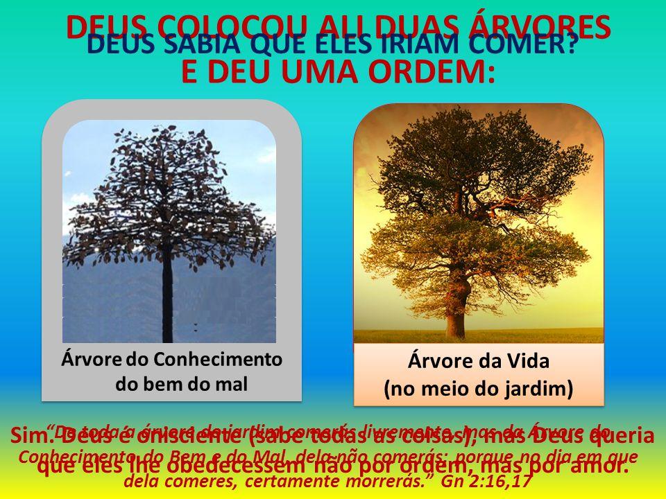 DEUS COLOCOU ALI DUAS ÁRVORES E DEU UMA ORDEM: Árvore da Vida (no meio do jardim) Árvore da Vida (no meio do jardim) De toda a árvore do jardim comerá