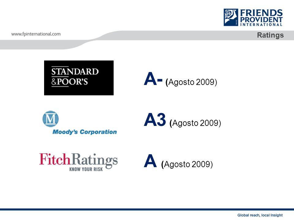 Serviços: página web Toda informação se encontra disponivel online www.fpinternational.com